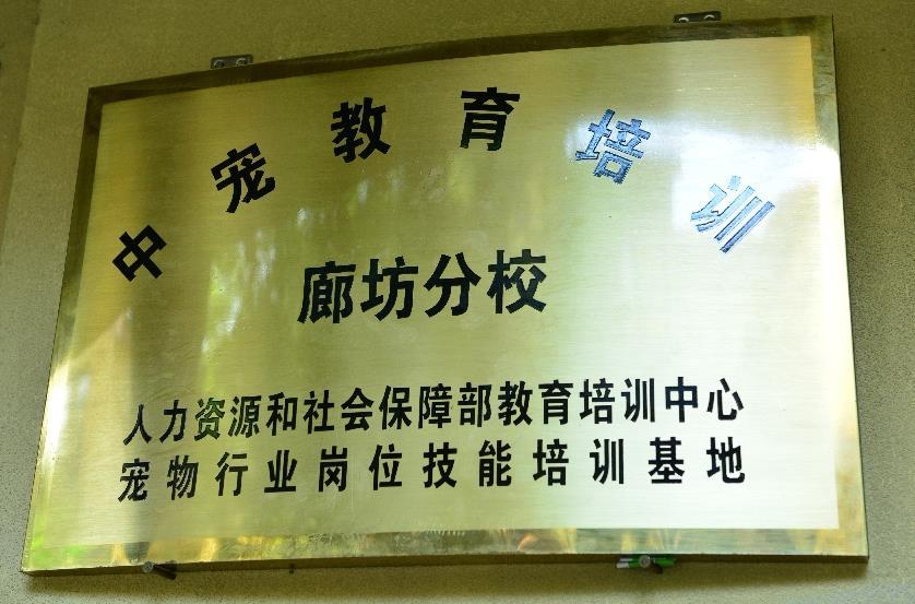铜仁市宠物美容师执照