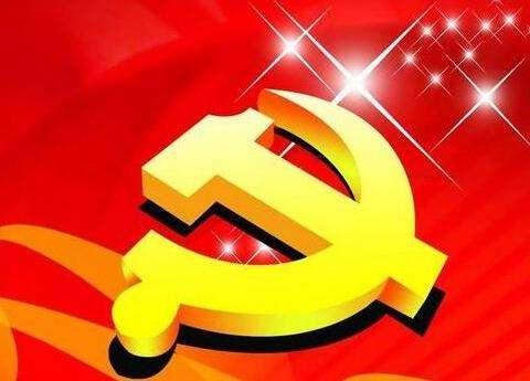 2021年集团党委第一季度党建工作汇报
